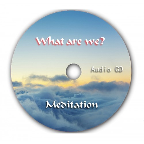What are we? Power Meditation Audio CD